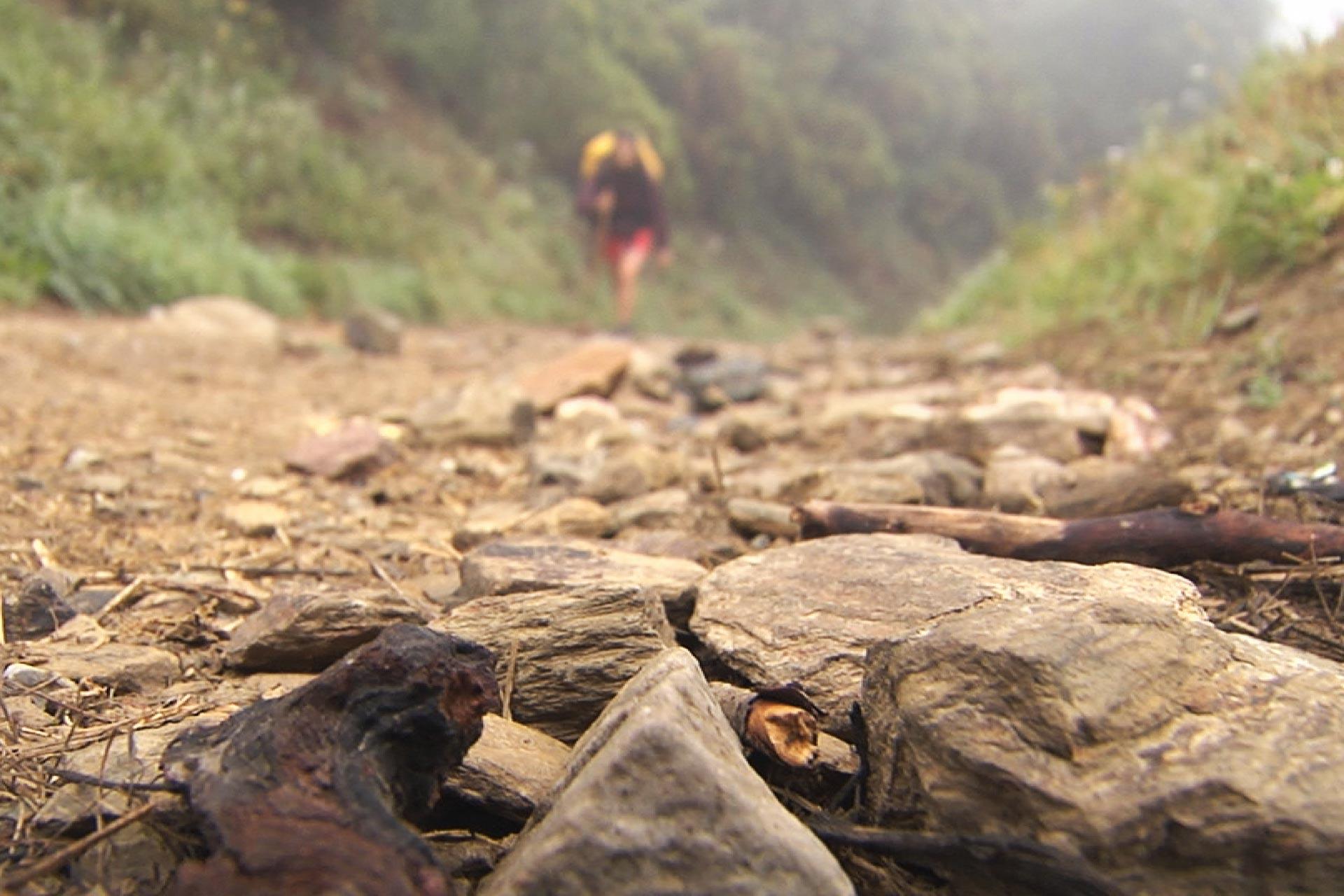 camino-santiago-1